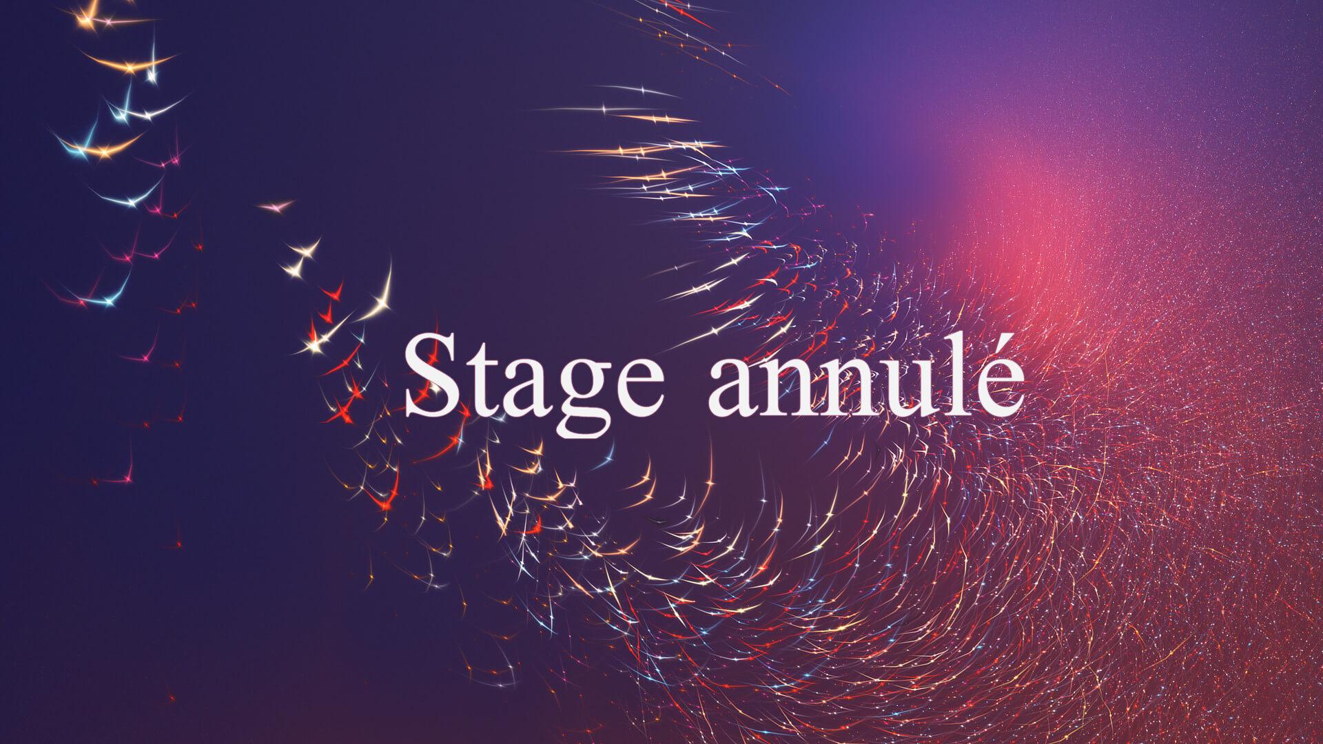 Week-end 13 et 14 novembre 2021 *** Ce stage est annulé